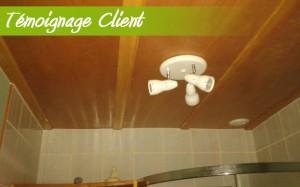 plafond salle de bain en bois